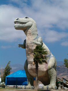 The Cabazon Dinosaurs  Cabazon California I have Been In THis Dino a few Tmes. I dont know if he is still there or not.
