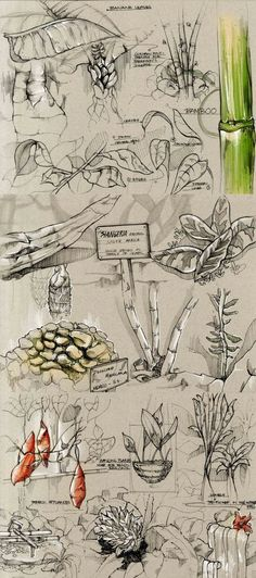 Sketches by Della Tosin, via Behance