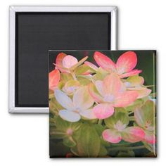 Pink Hydrangea Floral Magnet - photography gifts diy custom unique special