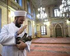 This imam from Istanbul keeps the doors open to his mosque during the winter so stray cats can enter and keep warm within the mosque.