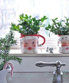 Vintage Santa mugs with Boxwood