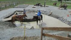 10 Trail Obstacles On Every Horseman's Wishlist