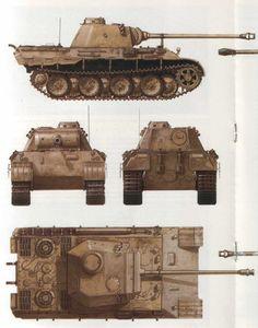 Panther Detail