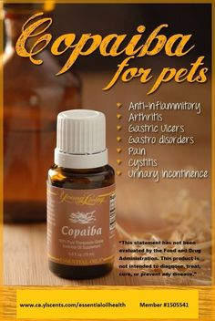 """Young Living Essential Oils for pets, Cobaiba www.ca.ylscents.com/essentialoilhealth """"This statement has not been evaluated by the FDA. This product is not intended to diagnose, treat, cure any disease."""""""