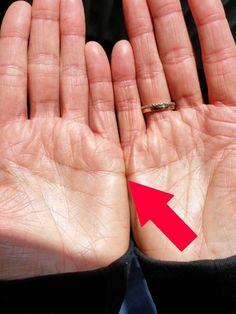 Bei manchen Menschen berühren sich die Herzlinien, wenn sie ihre Hände nebeneinander halten. Was bedeutet das nach der Handlese-Kunst? Und was bedeutet es, wenn sie es nicht tun?