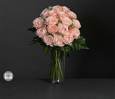 Pink,Rose,Arrangement