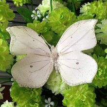 Butterfly, Butterfly direct from Lighting Star Crafts DL Co., Ltd. in China (Mainland)