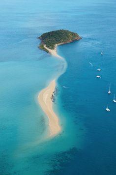 Hayman Island, Great Barrier Reef, Australia.