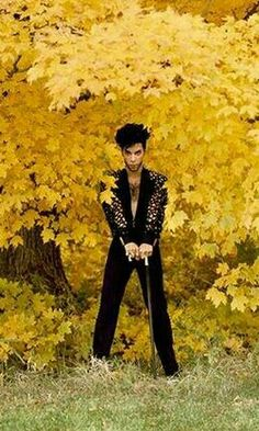 Lovin' this one because I love Autumn! Prince Images, Pictures Of Prince, Starfish And Coffee, Prince Quotes, The Artist Prince, Kind Of Blue, Prince Purple Rain, Paisley Park, Dearly Beloved