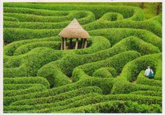 Garden Labyrinth by floquilter, via Flickr