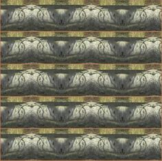 "Saatchi Art Artist Heather Bolton; Collage, ""Langton 5 Shadows on Bark"" #art"