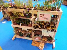 Handcrafted bug avenue at BBC Gardener's World Live