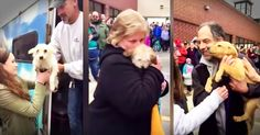 These 57 dogs were rescued from kill shelters and given a second chance at life. And now they have all been packed up and transported to meet their new families. Seeing these dogs get picked up one by one with love and joy to start their new lives made my heart so full! God bless these rescuers!