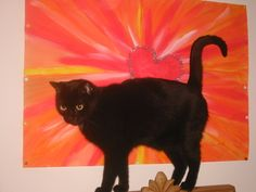 Gerti's Seite - gerti1110 - 1110 Wien - sms.at Cats, Animals, Loneliness, Painting Art, Gatos, Animales, Kitty Cats, Animaux, Animal Memes
