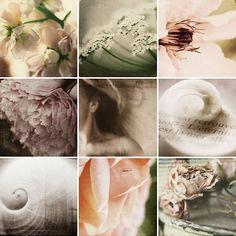 T does wool flickr par hilwegner