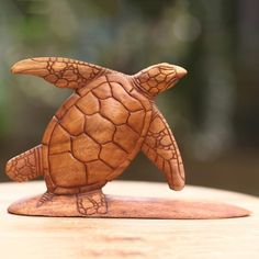 NOVICA Hand Carved Wood Sculpture Turtle on Surf Board from Bali (260 ILS) ❤ liked on Polyvore featuring home, home decor, brown, clothing & accessories, sculpture, wood home decor, wooden sculptures, wooden home decor, novica home decor and sea turtle home decor