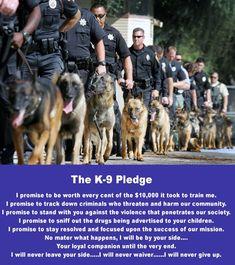 The K-9 Pledge