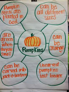 Lowes' Kindergarten Korner: Pumpkins Bubble Map-I need to start doing this to help them build schema about all the words we're trying to learn. It can be a weekly word, then add to it throughout the week. Fall Preschool, Kindergarten Science, Kindergarten Classroom, Preschool Curriculum, Homeschooling, Classroom Ideas, Preschool Class, Teaching Science, Pre K Activities