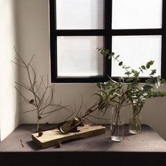 빛이 들어올 때, 간만의 작업실 한 줄기씩 남은 꽃 들 . #더파티데이 #작업실 #꽃 #flowers