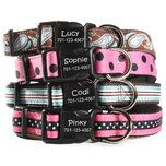 Does your dog have style? Fit them up with a designer dog collar from dogIDs.com!