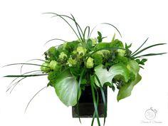 Green Hydrangea, Hydrangeas, Beautiful Flower Arrangements, Beautiful Flowers, Green Rose, Blossoms, Roses, Herbs, Flowers