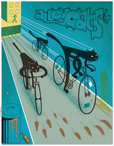 Cat + Bicycle