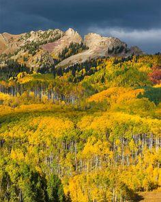 Kebler Pass- Colorado