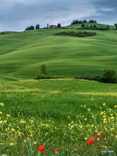 Val d'Orcia by Luigi Alesi on Beautiful Photos Of Nature, Nature Pictures, Beautiful Landscapes, Paradise On Earth, Photos Voyages, City Landscape, Belleza Natural, Beautiful Places To Visit, The Great Outdoors