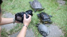 Photography course for beginners in Singapore  - Photography course for ...