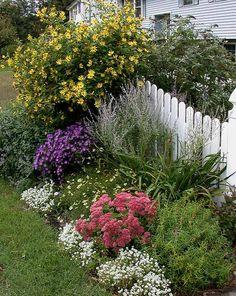 cute little garden Picket Fence Garden, White Picket Fence, Garden Fencing, Picket Fences, Garden Oasis, Lawn And Garden, Garden Borders, Flower Borders, Cute Cottage