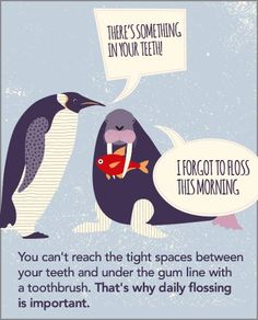 #dentalhealthtips #dentalfloss #penguin #walrus #practiceplan