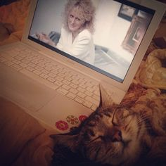 <3 Glenn Close, Fatal Attraction, American Actress, Singer, Cats, Animals, Gatos, Animales, Animaux