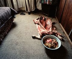 Mikhael Subotzky- Offering To The Ancestors, Kwa Mandlankosi [ Out Of Focus: Photography ] - Pictify - your social art network Megan Turner, Beaufort West, Saatchi Gallery, Social Art, Out Of Focus, Focus Photography, Artist Profile, The Grim, Magnum Photos