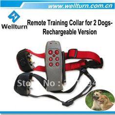 You have to see this!! http://dogtraining-mb3g5sp8.popularreviewsonline.com