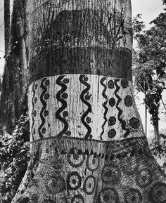 """Yakoana Hiitehi | Yanomami | Brazil | Sebatian Salgado """
