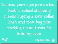 You Know You're A Pet Parent When…#48 Back To School Shopping