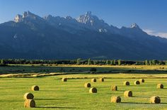 Jackson, Wyoming hay fields and view of the Tetons