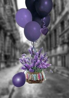 Purple balloons and flowers, oh my Happy Birthday Wishes Cards, Birthday Wishes And Images, Happy Birthday Flower, Wishes Images, Birthday Pictures, Birthday Blessings, Best Birthday Quotes, Purple Balloons, Birthday Balloons