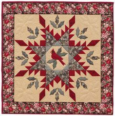 feathered star quilt - Google Search