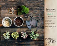 DIY - Succulent Terrariums - How-To