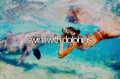 Swim with dolphins, something I'd love to do!