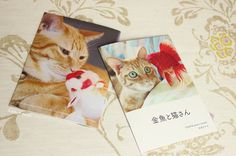 Etsy の Photo book of goldfish and cat by demetyoubi