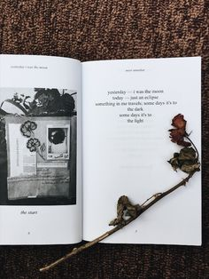 yesterday i was the moon — a collection of poetry by noor unnahar   // book books, reading, indie pale grunge hipsters aesthetics tumblr floral beige aesthetic mybeigelife, bookstagram igreads book, quotes words instagram creative photography flatlay ideas inspiration, women writers of color writing pakistani artist //