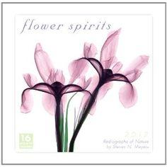 my favorite calendars by Steven N. Meyers, radiographs of flowers,