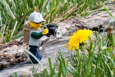 Legographer in primavera