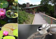 free: The 104-acre Nature Realm includes a 10,000-square-feet visitors center with a gift shop, several gardens, observation decks, two ponds, hiking trails and a tall-grass prairie.