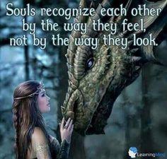 Strange quote; pretty picture