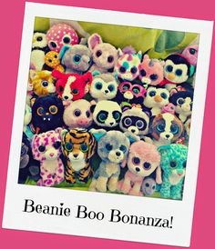 Bday girl has requested Beanie Boos for party favors....I need to start looking for some sales!