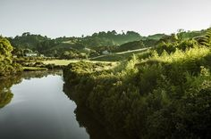 Down stream from the Puhoi Cottage New Zealand, Cottage, River, Outdoor, Image, Outdoors, Cottages, Outdoor Games, Cabin