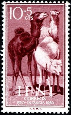 Camels on stamps? - Stamp Community Forum - Page 8